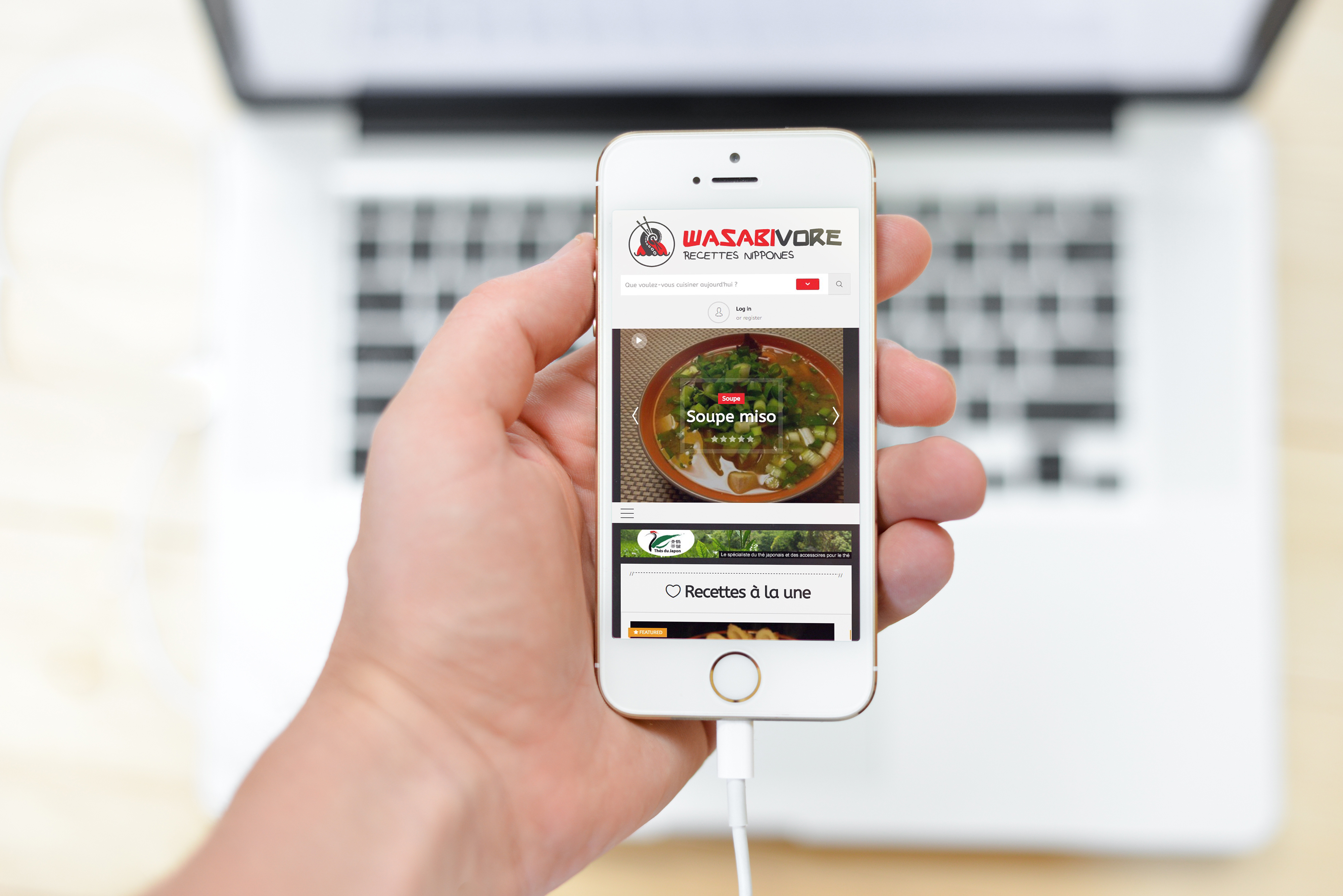 site-internet-wasabivore-portable-mockup